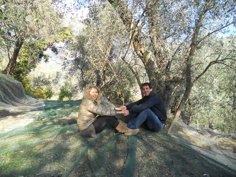 our family taggiasca oil farm